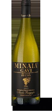 Minaia Gavi